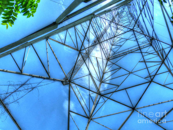 Mj Olsen Print featuring the photograph Tangled Web by MJ Olsen
