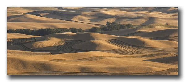 Usa Print featuring the photograph Harvest Hills by Latah Trail Foundation