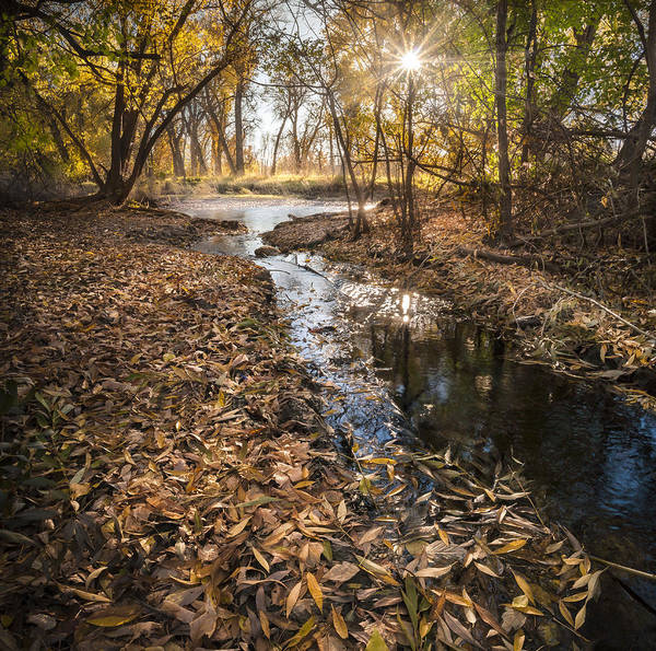 Poudre River Print featuring the photograph Today by Michael Van Beber