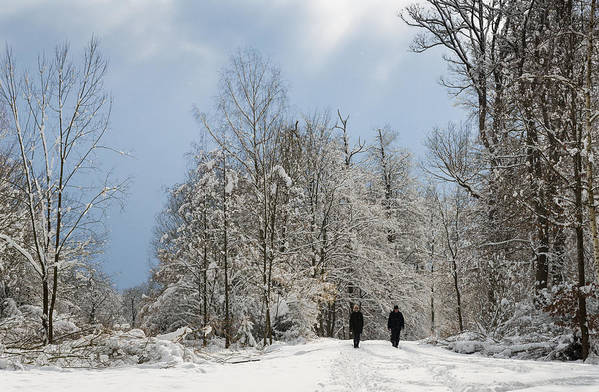 Winter Print featuring the photograph Two People Doing A Walk In Beautiful Forest In Winter by Matthias Hauser