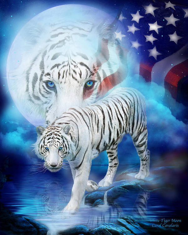 Carol Cavalaris Print featuring the mixed media White Tiger Moon - Patriotic by Carol Cavalaris