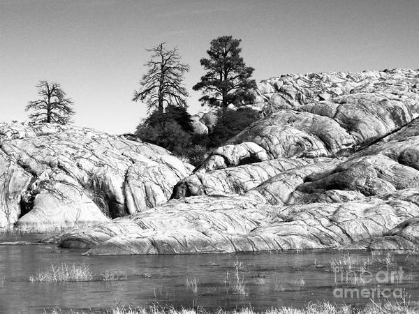 Willow Lake Print featuring the photograph Willow Lake Number One Bw by Heather Kirk