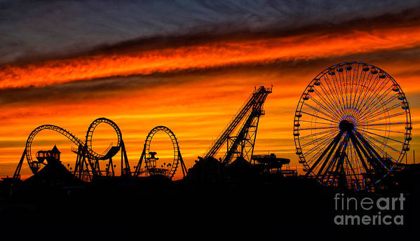 Wildwood Print featuring the photograph Wildwood At Dawn by Mark Miller
