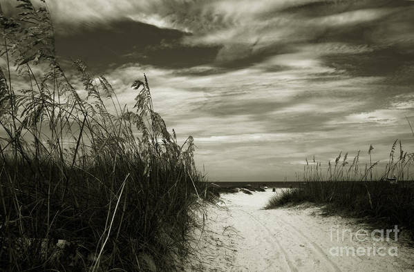 Landscape Print featuring the photograph Let's Go To The Beach by Susanne Van Hulst