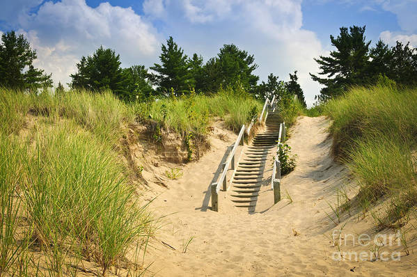 Beach Print featuring the photograph Wooden Stairs Over Dunes At Beach by Elena Elisseeva