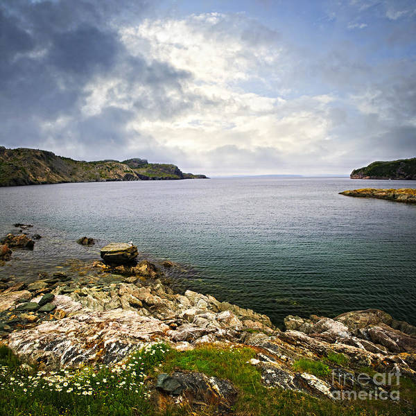 Coast Print featuring the photograph Atlantic Coast In Newfoundland by Elena Elisseeva
