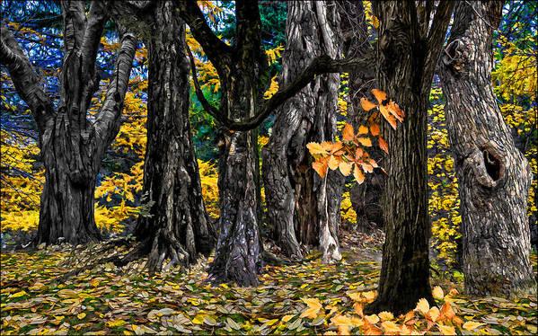 Landscape Print featuring the photograph Autumn Landscape by Vladimir Kholostykh