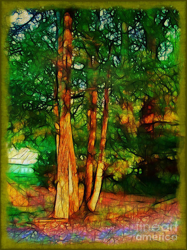 Trees Print featuring the photograph Afternoon Delight by Judi Bagwell