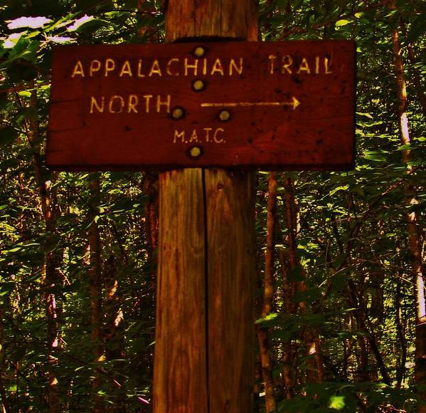 Hiking Print featuring the photograph Appalachian Trail by Sarah Buechler