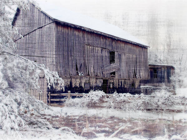 Barn Print featuring the photograph Behind The Barn by Kathy Jennings