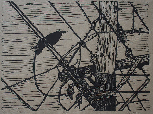 Bird Print featuring the drawing Bird On A Wire by William Cauthern