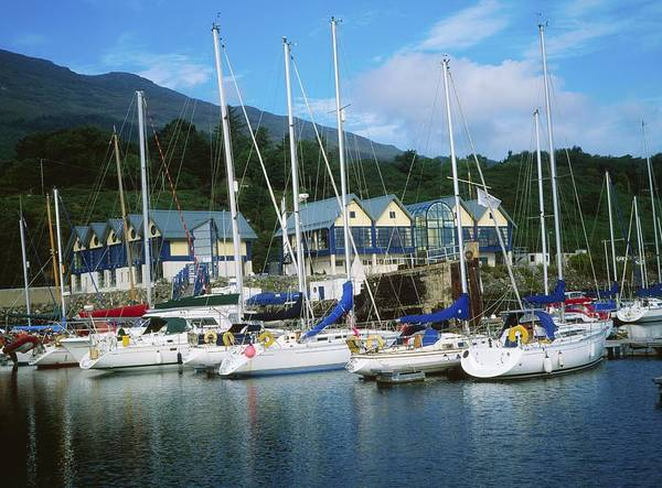 Ireland Print featuring the photograph Carlingford Marina, Carlingford, County by The Irish Image Collection