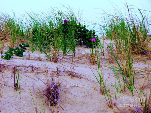 Sand Print featuring the photograph Dunes by Susan Carella
