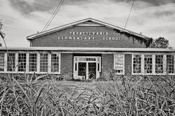 Elementary School Print by Scott Pellegrin