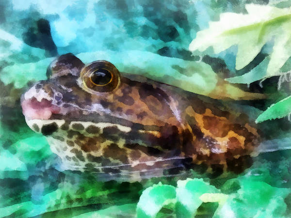 Frog Print featuring the photograph Frog Ready To Be Kissed by Susan Savad