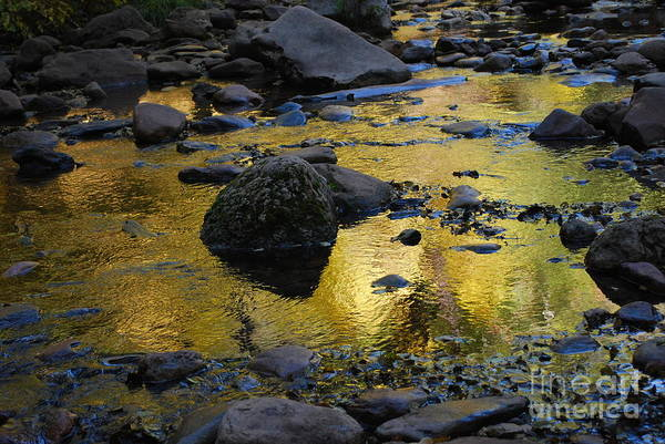 Sedona Print featuring the photograph Golden Fall Reflection by Heather Kirk