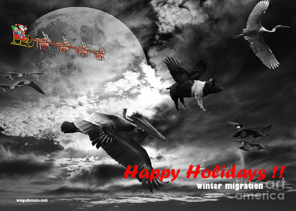 Christmas Print featuring the photograph Happy Holidays . Winter Migration . Bw by Wingsdomain Art and Photography