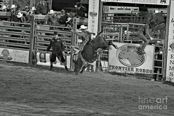 Bull Riding Print featuring the photograph Hold On For 8 by Shawn Naranjo