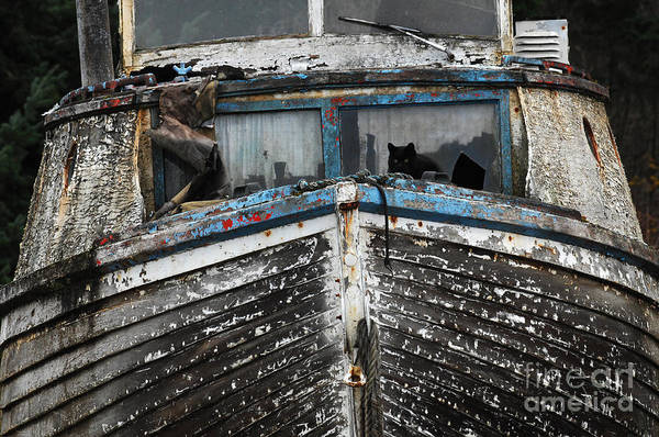 Fishing Boats Print featuring the photograph In Need Of Work by Bob Christopher