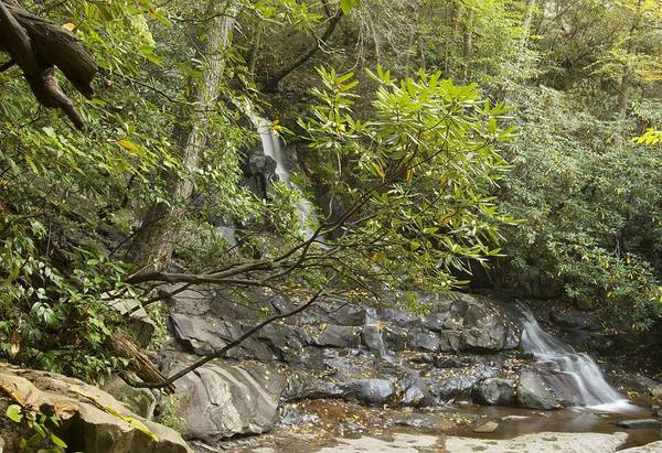Laurel Falls Print featuring the photograph Laurel Falls 6226 by Michael Peychich