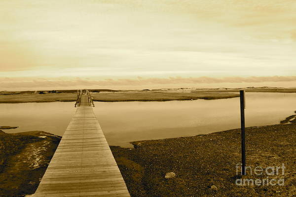Boardwalk Print featuring the photograph Lets Take A Walk by Eric Chapman