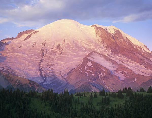 00177104 Print featuring the photograph Mount Rainier At Sunrise Mount Rainier by Tim Fitzharris