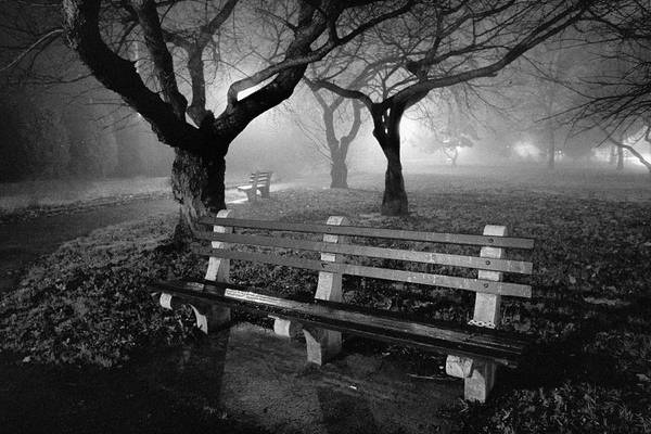 Foggy Print featuring the photograph Park Benches by Gary Heller