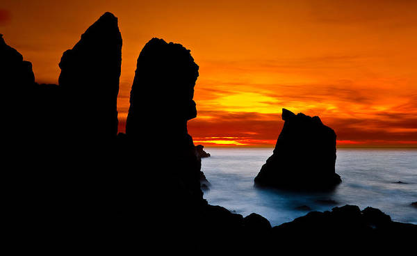 Patrick's Point Print featuring the photograph Patrick's Point Silhouette by Greg Nyquist