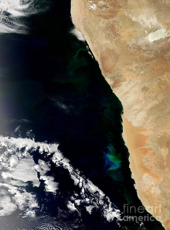 Phytoplankton Print featuring the photograph Phytoplankton Bloom Off Nambia by Nasa