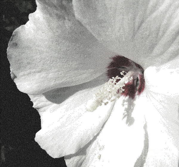 Althea Print featuring the digital art Pointillized Althea Flower by Renee Trenholm
