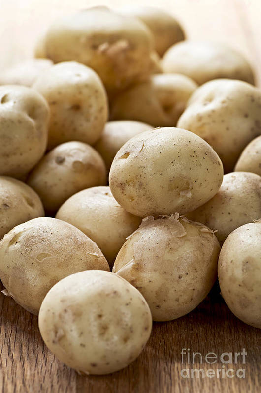 Potatoes Print featuring the photograph Potatoes by Elena Elisseeva