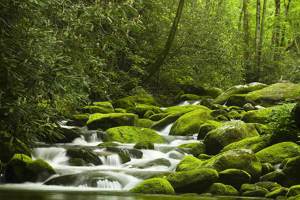 River Print featuring the photograph Rapids At Springtime by Andrew Soundarajan