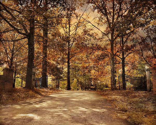Autumn Print featuring the photograph Secluded Entrance by Jai Johnson