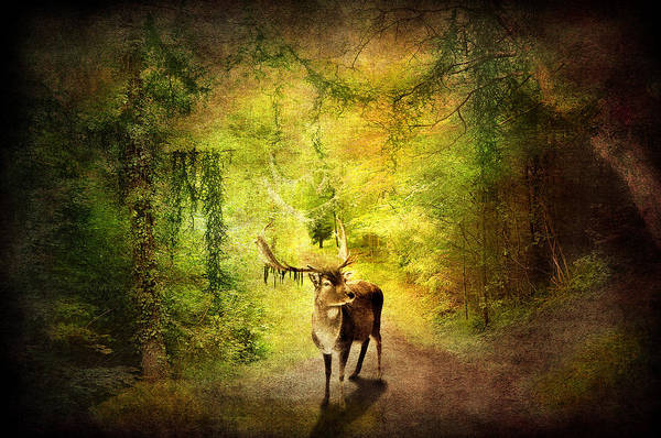 Artistic Print featuring the digital art Stag by Svetlana Sewell