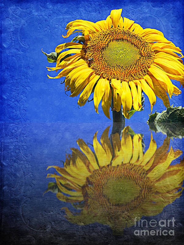 Sunflower Print featuring the photograph Sunflower Reflection by Andee Design