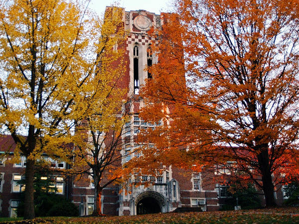 Tennessee Print featuring the photograph Tennessee Ayers Hall by University of Tennessee Athletics
