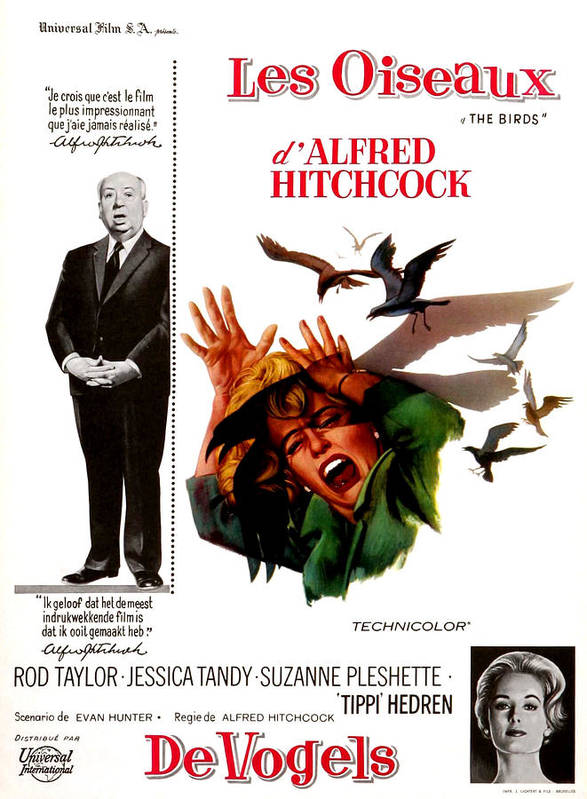 1960s Portraits Print featuring the photograph The Birds, Aka Alfred Hitchcocks The by Everett