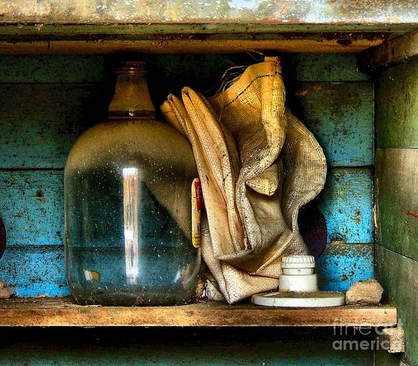 Still Life Print featuring the photograph The Dust Gatherers by Julie Dant