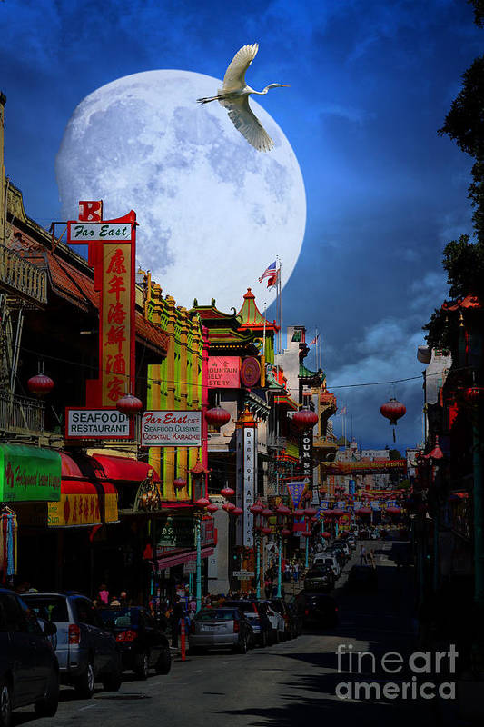 San Francisco Print featuring the photograph The Great White Egret Of Chinatown . 7d7172 by Wingsdomain Art and Photography