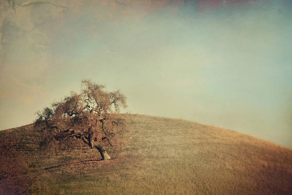 Landscape Print featuring the photograph The Neverending Loneliness by Laurie Search