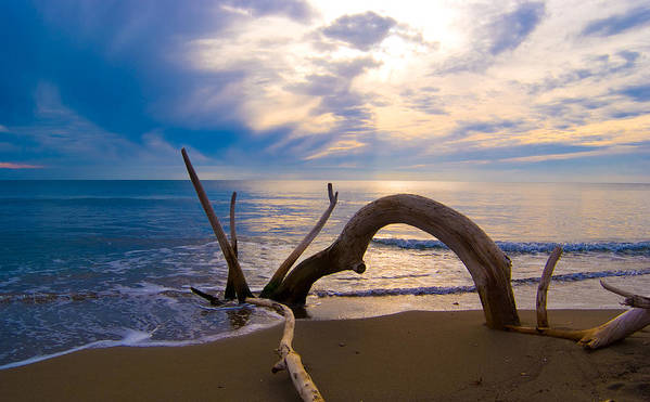 Driftwood Sea Mediterranean Sunset Sky Cloud Water Calm Serenity Print featuring the photograph The Wooden Arch by Marco Busoni