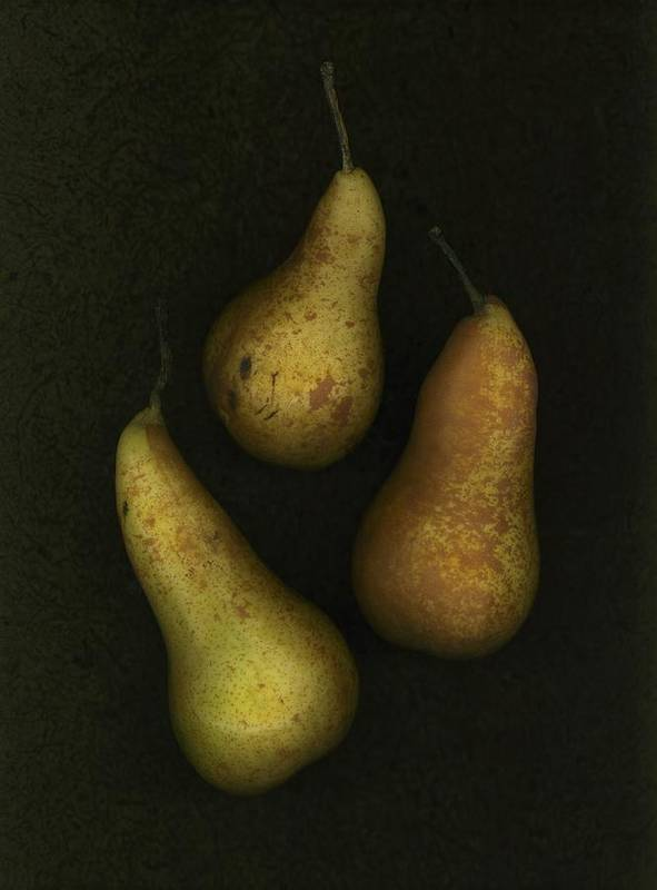 Arranged Print featuring the photograph Three Golden Pears by Deddeda