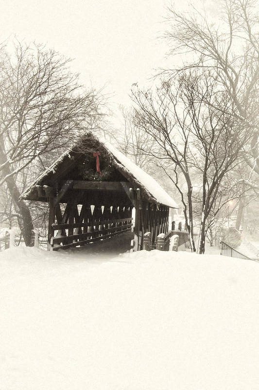 Winter Print featuring the photograph Waiting For The Sleigh by Andrew Soundarajan