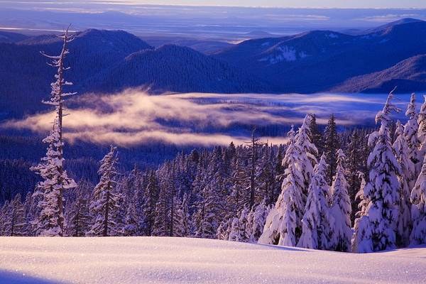 Beauty In Nature Print featuring the photograph Winter Snow, Cascade Range, Oregon, Usa by Craig Tuttle