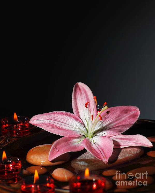 Still Life Print featuring the photograph Zen Atmosphere At Spa Salon by Anna Omelchenko