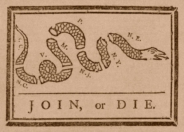 Join Or Die Print featuring the drawing Join Or Die by War Is Hell Store