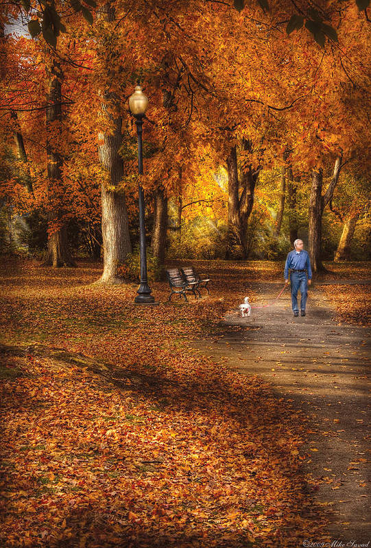 Savad Print featuring the photograph Autumn - People - A Walk In The Park by Mike Savad