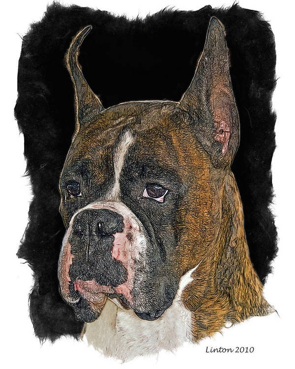 Boxer Print featuring the digital art Boxer by Larry Linton