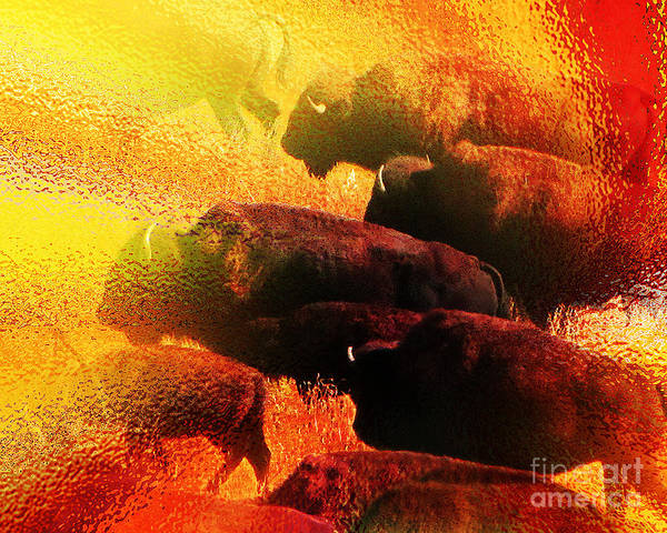 Abstract Print featuring the photograph Buffalo Sun by Terril Heilman