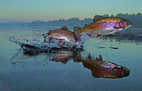 Rainbow Trout Print featuring the photograph Dance Of The Trout by Brian Pelkey